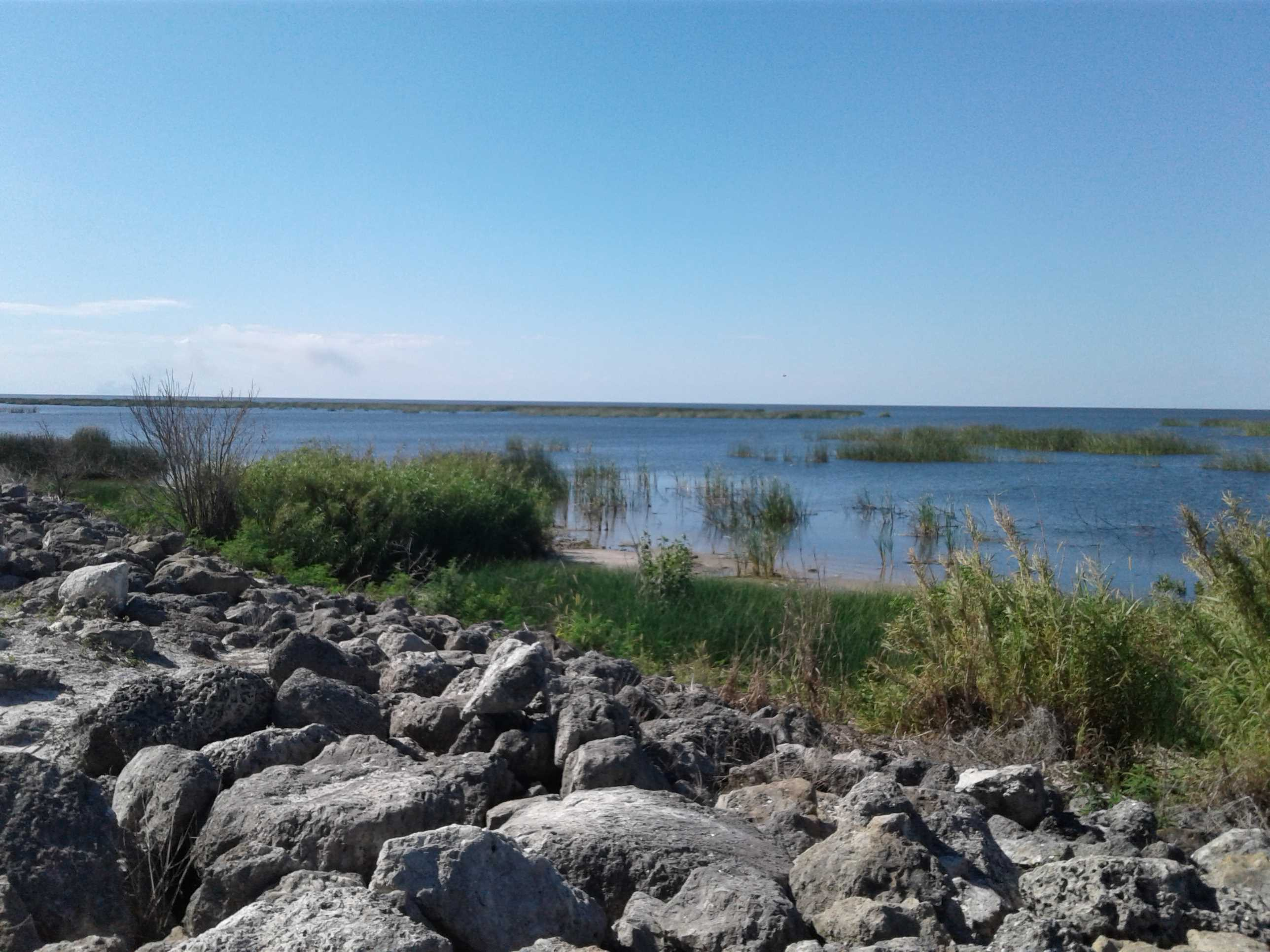 View of Lake Okeechobee