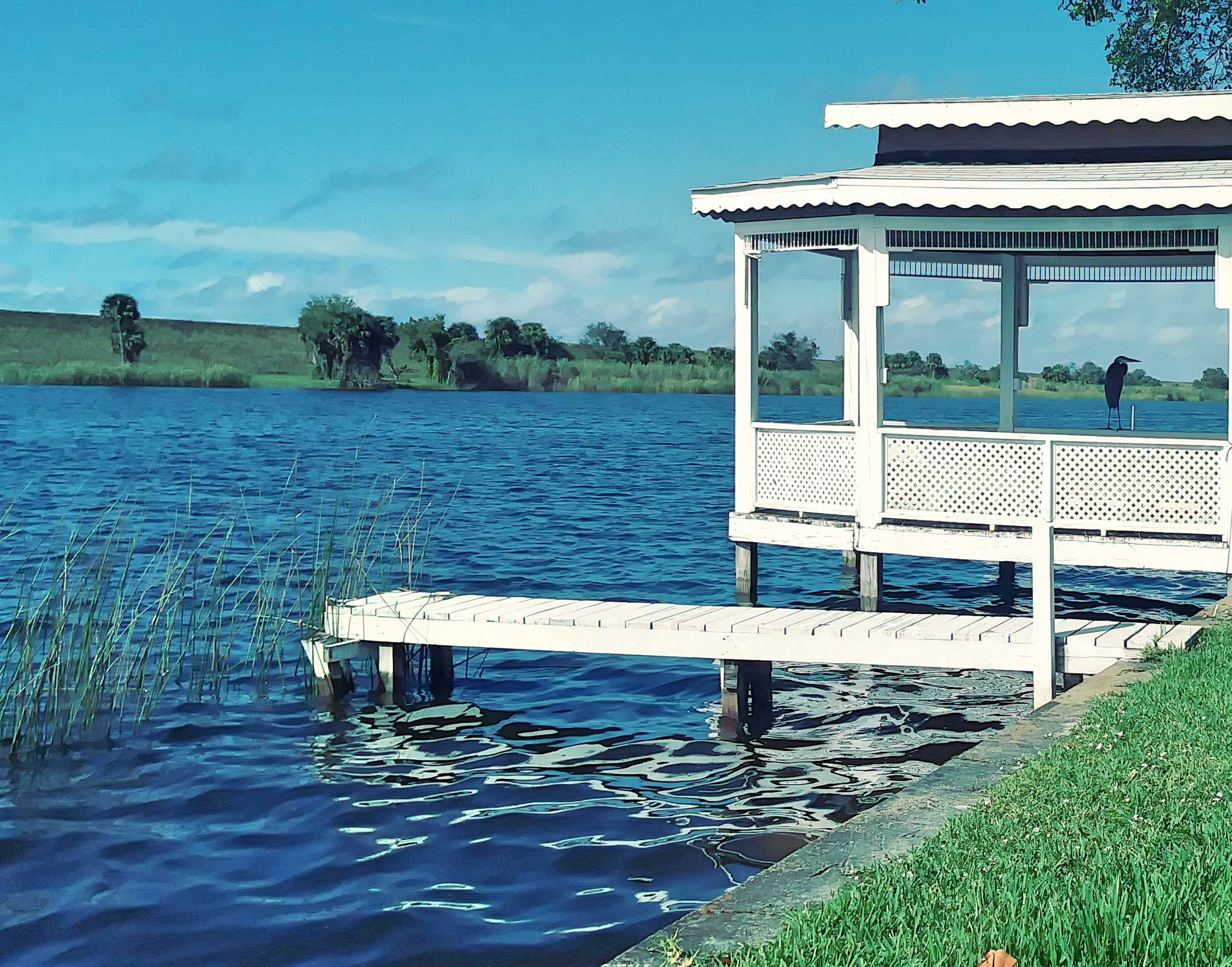 Tiny House Park Gazebo & Blue Heron